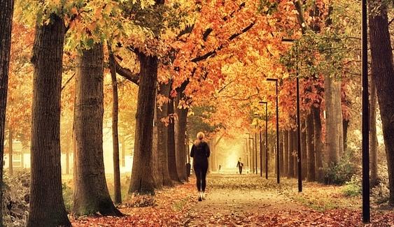 jesien1